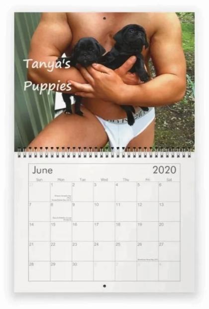 Fireman Calendar 2020